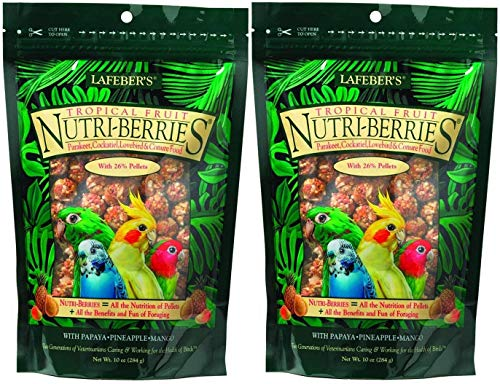 (Lafeber's Gourmet Tropical Fruit Nutri-Berries Parakeet, Cockatiel & Conure Food 10 oz (2 Pack))