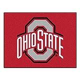 Ohio State University Logo Area Rug (ulti-mat) Review