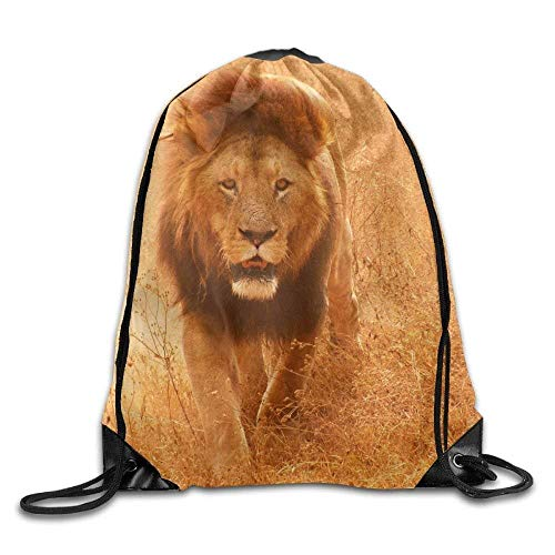 Drawstring Bags Gym Bag Travel Backpack Lion Gym Equipment Bags for Boys Girls Adults Mothers Rucksack Canvas16.9x14.2 ()
