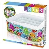"Intex Swim Center Clearview Aquarium Inflatable Pool, 62.5"" X 62.5"" X 19.5"", for Ages 3+"