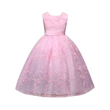 Party Kleid für Kinder Baby Mädchen Lange ärmellose Spitze Ballkleid ...