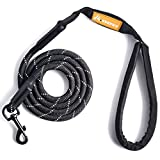 GEEPET Mountain Climbing Rope Dog Leash - Premium Quality - Supports the Strongest Pulling Large and Medium Sized Dogs 6 feet