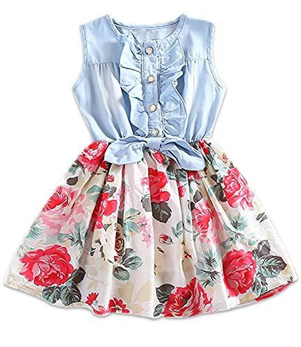 Little Girls Denim Floral Print Dress Summer Sleeveless Princess Dresses Tutu Skirts for Kids Birthday Easter Party -