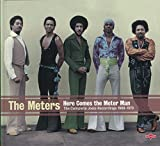 METERS, THE - HERE COMES THE METER MAN