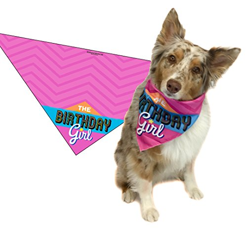 Stonehouse Collection Dog Birthday Girl - Happy Birthday Dog Bandana - Dog Birthday Scarf Accessory - Great Dog Gift Idea (Medium to Large)