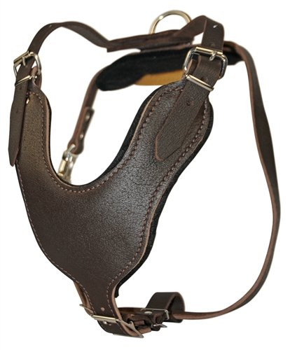 Dean and Tyler Leather Basic Nickel Hardware Dog Harness with Handle, Brown, Large - Fits Girth Size: 31-Inch to 41-Inch by Dean & Tyler (Image #5)