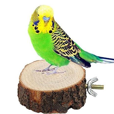 Moxcow Parrot Jaula de pájaros Perchas Redondo de Madera Soporte ...