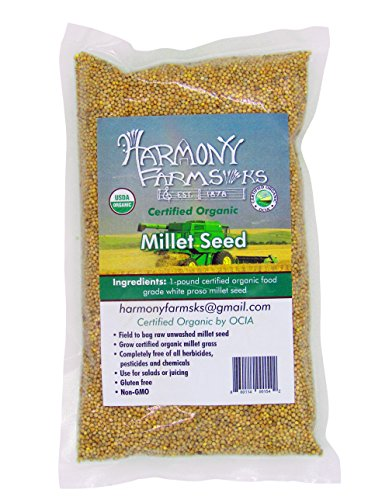 Certified Organic White Proso Millet Seed. 1 pound bag