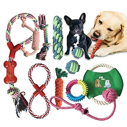 Pejoye Hundespielzeug Set Kauspielzeug Hund Welpenspielzeug Kleine Welpen Unzerstörbar für Große Hunde 10 Stück Natur…