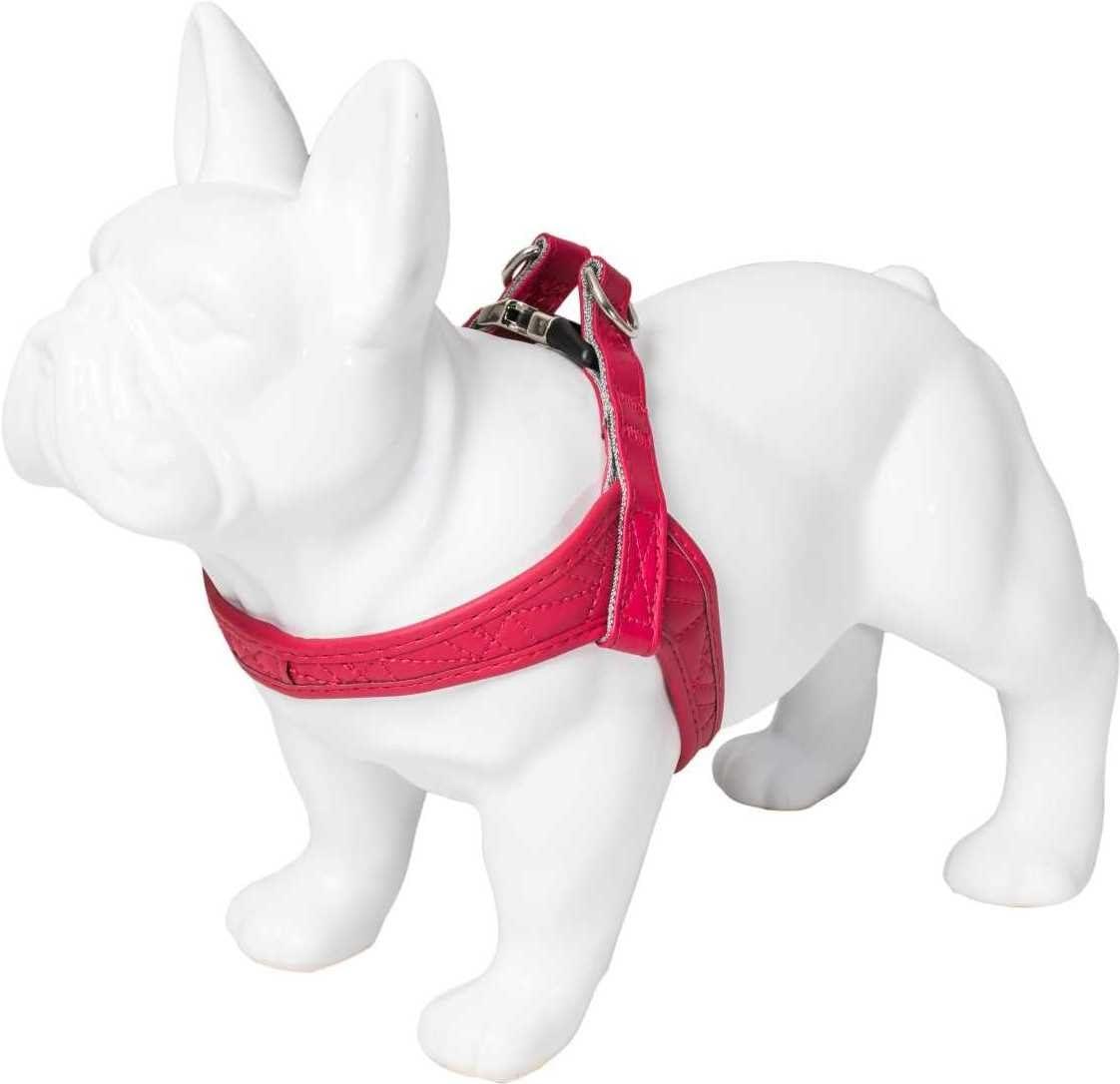 Karl Lagerfeld - Arnés para Mascotas para Perros medianos y ...