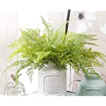 Felice-Arts-4-PCS-Artificial-Boston-Shrubs-Plastic-Faux-Fern-Purple-Fake-Plant-Inside-Outdoor-Decoration-for-Wedding-Garden-Farmhouse-Home-Space-Office-or-Gifts