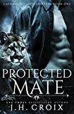 Protected Mate (Catamount Lion Shifters Book 1) by  J.H. Croix in stock, buy online here