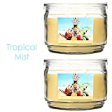 Hosley Set of 2 Tropical Mist Highly Scented, 2 Wick, 10 Oz wax, Jar Candle. We Hand Pour Our Candles Using a High Quality Wax Blends with Essential Oil Infused. Perfect for everyday use, wedding, events, aromatherapy,Spa, Reiki, Meditation
