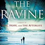 The Ravine: A Novel of Evil, Hope, and the Afterlife | Robert Pascuzzi