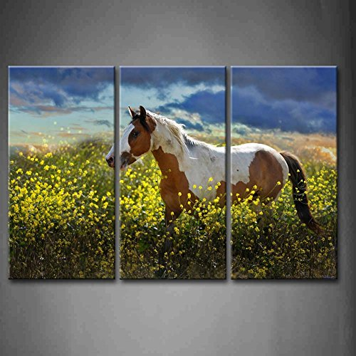 First Wall Art - 3 Panel Wall Art Painted Pony A Choctaw Horse Walks Through A Field Of Yellow Mustard Plants Painting Pictures Print On Canvas Animal The Picture For Home Modern Decoration piece (Stretched By Wooden Frame,Ready To Hang)