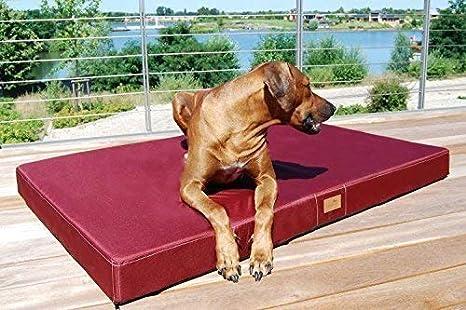 tierlando® Mobile Perros Colchón Hugo Basic | gehobene estabilidad & Calidad. | Anti de