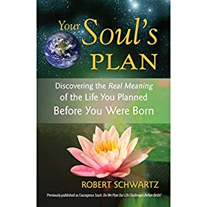 Your Soul's Plan Hörbuch