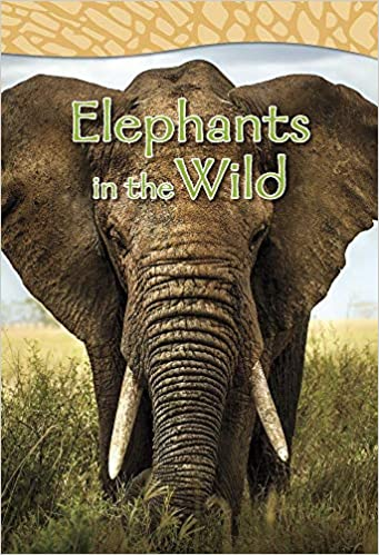 Elephants In The Wild Shared Reading Big Books Claire Robinson