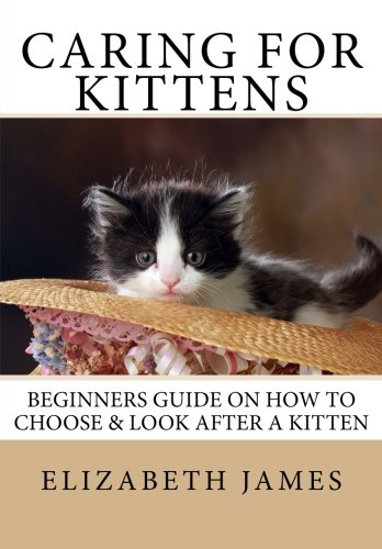 Kittens For Dummies Pdf