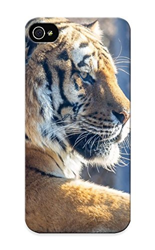 Appearance Snap-on Case Designed For Iphone 5/5s- Tiger Wild Cat Predator Face Profile Recreation (best Gifts For Lovers)
