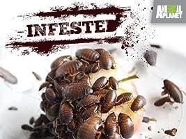 Infested: Season 1