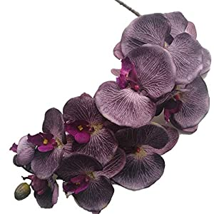 jiumengya 6pcs Purple Color Moth Orchids Phalaenopsis Orchid Big Orchid Flower Head 10 Heads/Piece for Wedding Decorative Artificial Flowers (Purple) 108
