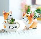 Vencer Cute Animal Shaped Cartoon Home Decoration Succulent Vase Flower Pots,Office Desktop Potted Stand,2 Pack,VF-013