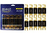Absolute USA ANL100-10 10 Pack ANL 100 Amp Gold Plated Fuse