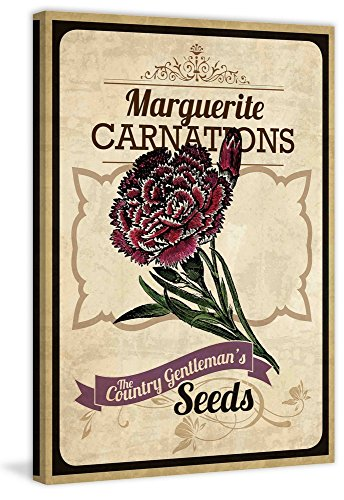 Marmont Hill Vintage-Farm Kitchen 'Flower Packet Carnation' Canvas