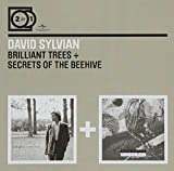 David Sylvian: 2 for 1: Brilliant Trees / Secrets of the Beehive (Audio CD)