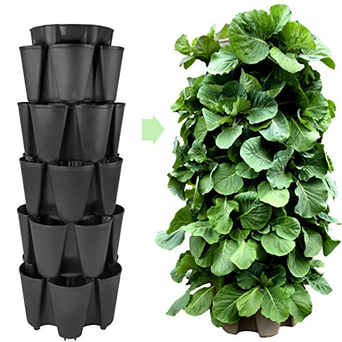 (Huge GreenStalk 5 Tier Vertical Garden Planter w/Patented Internal Watering System Great for Growing a Variety of Strawberries, Vegetables, Herbs, Flowers on a Balcony or Deck (Beautiful Black))