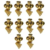 Wood Deck MA2-10 Brass Anchor for Pool Safety Cover - 10 Pack