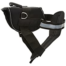 Dean & Tyler Please Give Me Space Do Not Pet Dog Harness with Padded Puppy Leash, Large, Black