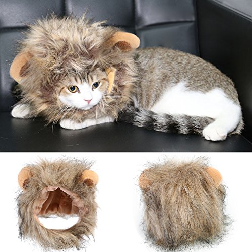 Costume Panda Cat (Lion Mane Wigs for Cat Dog, Halloween Christmas Cosplay Pet Costumes Fancy Lion Hair Cat Costume Headgear,)