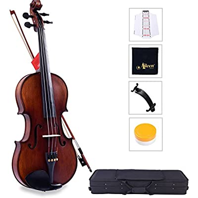 aileen-solidwood-ebony-violin-with