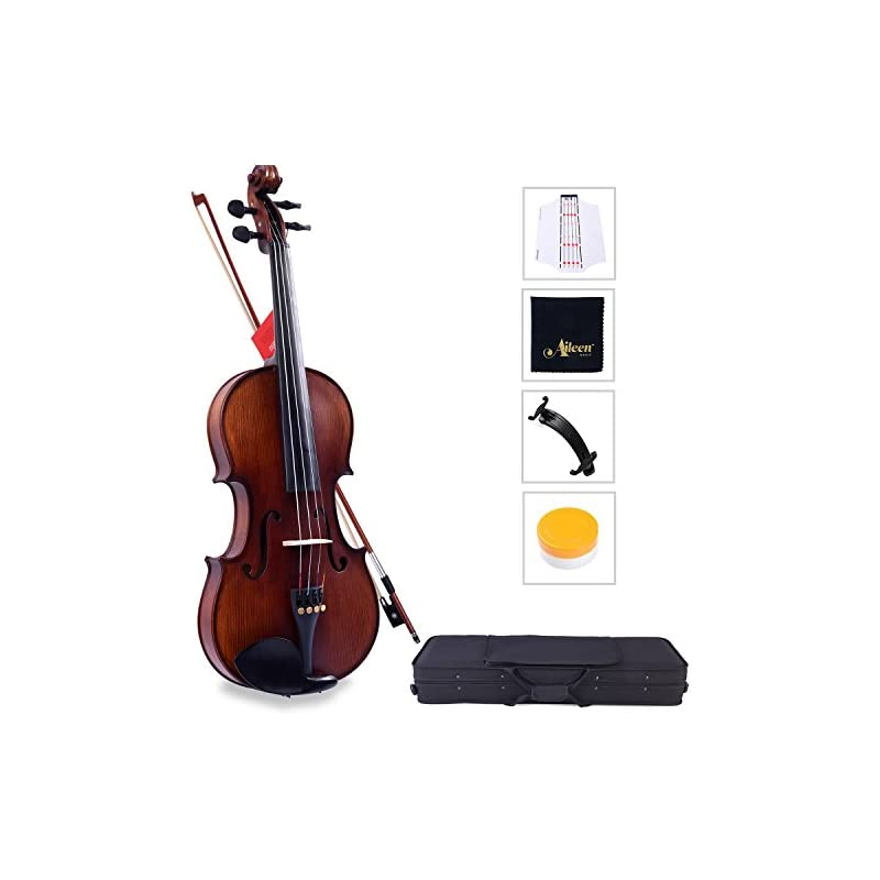 Aileen Solidwood Ebony Violin with D'Add