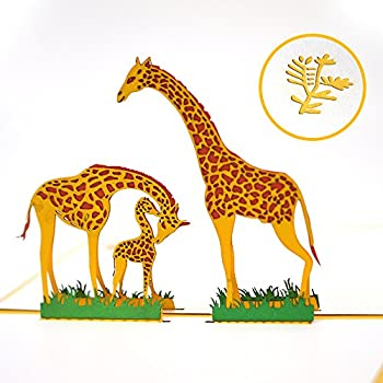 Amazon Pop Up Thank You Cards Breezypals Giraffe Birthday
