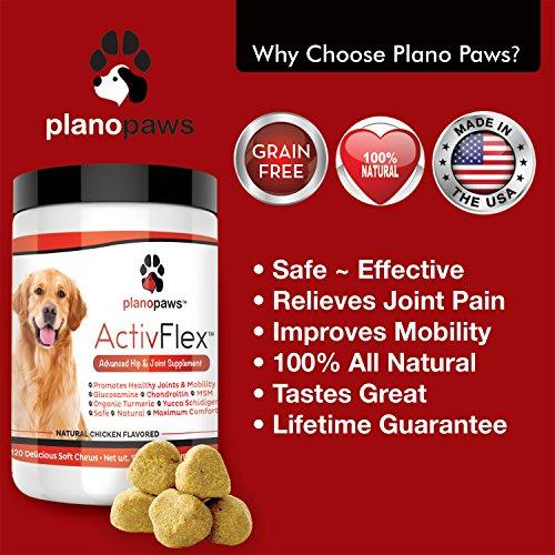 Activflex Best Glucosamine For Dogs Safe Arthritis Pain