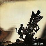 Cloudbusting - Kate Bush 7