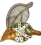 Sukhadia's Indian Snacks, Assorted Dry Fruits & Savories in Golden Mango Leaf, 16oz