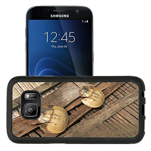 Horseshoe Crab Photo - Liili Samsung Galaxy S7 Aluminum Backplate Bumper Snap Case retriver Photo 19682663 iPhone6 IMAGE ID: 2677640 horseshoe crabs