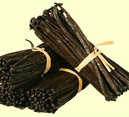 Rare Vanilla Planifolia Bean Rooted Plant/Ready to Grow Indoor/Outdoor/One Plant by Live seeds