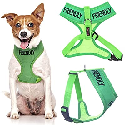 FRIENDLY (Known as Friendly to all) Green Color Coded Non-Pull Front and Back D Ring Padded and Waterproof Vest Dog Harness PREVENTS Accidents By Warning Others Of Your Dog In Advance