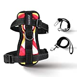 Cheap MUGENTER Adjustable Dog Safety Vest Harnesses, Outdoor Walking Safety Chest Straps, Vest Harness with Car Seat Belt Restraint Lead for Small Dogs