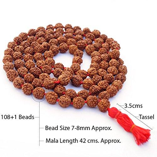 (Rudraksha Seed Mala (Origin: Nepal) - 108 Beads)