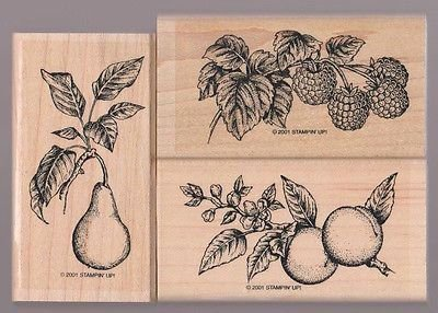Ripened Peaches - 4