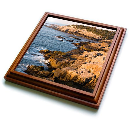 3dRose trv_90683_1 Isle Au Haut Acadia National Park, Maine US20 JMO0814 Jerry and Marcy Monkman Trivet with Ceramic Tile, 8 by 8