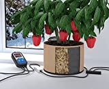 ThermoSoil Root Zone Heating / Plant Warmer & Control – RootWarmer Series 24 Starter Kit