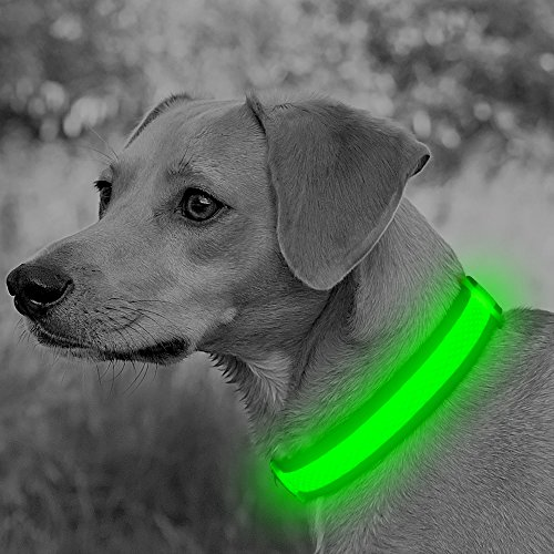 Clan x Rechargeable Flashing Adjustable Collars