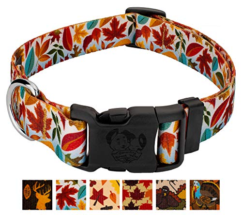 Country Brook Petz - Deluxe Brisk Autumn Dog Collar - Awesome Autumn Collection with 6 Designs Youll Fall for (5/8 Inch, Small)